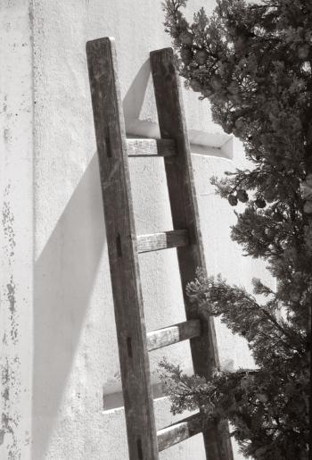 Garden-ladder