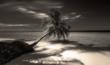Maldives 5